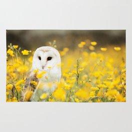Australian Barn Owl (Tyto Alba) Rug
