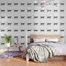 Dust kitten Wallpaper