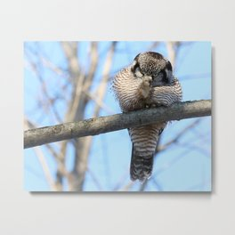 POW Right In The Kisser Metal Print