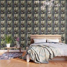 Soldotna Red Squirrel Wallpaper