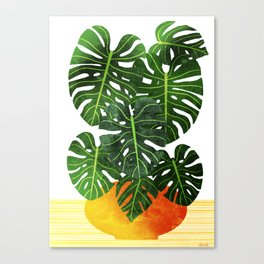 Swiss Cheese Plant Canvas Print