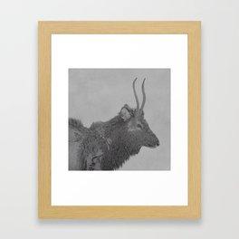 Deer with Whistler Framed Art Print