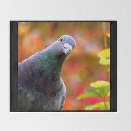 Cute Curious Pigeon Throw Blanket