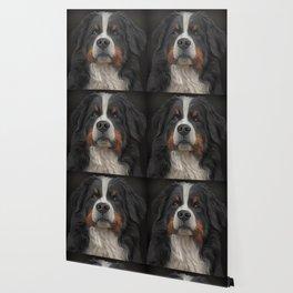 Bernese Mountain Dog Wallpaper