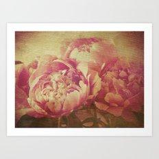 Peonies Art Print