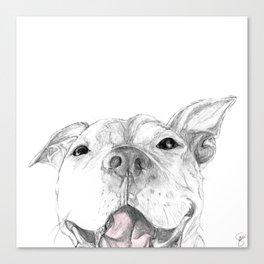 Whaddup :: A Pit Bull Smile Canvas Print