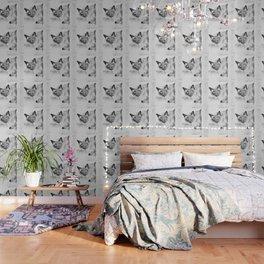 Peek A Boo Kitty Wallpaper