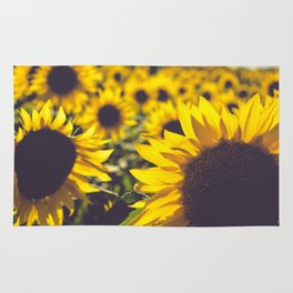 Summer Sunflower Love Rug
