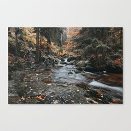 Autumn Creek - Landscape and Nature Photography Canvas Print