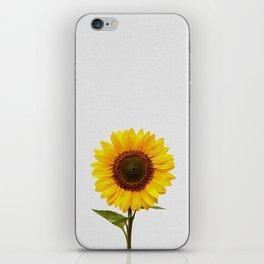 Sunflower Still Life iPhone Skin