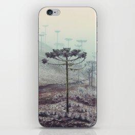 Winter Araucaria iPhone Skin