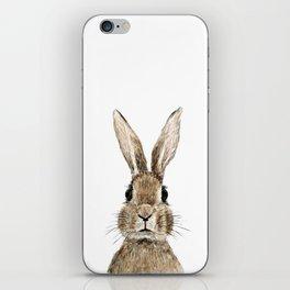 cute innocent rabbit iPhone Skin
