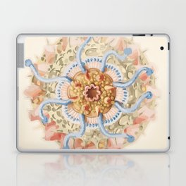 Ernst Haeckel Revisited Laptop & iPad Skin