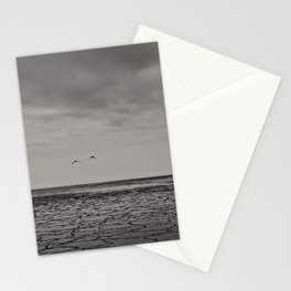 Two birds and a frozen sea Stationery Cards