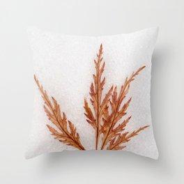 Iceolatia Throw Pillow