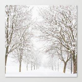 SnowLand Canvas Print