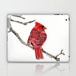 Winter Cardinal On White Laptop & iPad Skin