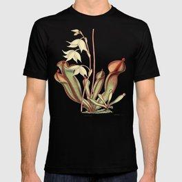 Heliamphora nutans T-shirt