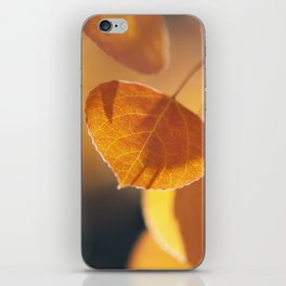 Aspen Embers iPhone Skin