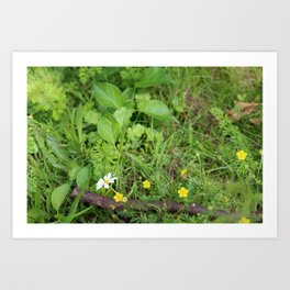 Fairyland Art Print