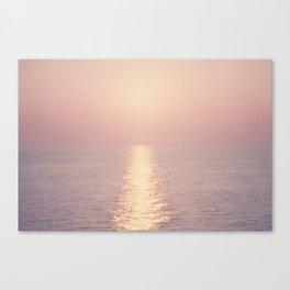 cashmere rose sunset Canvas Print