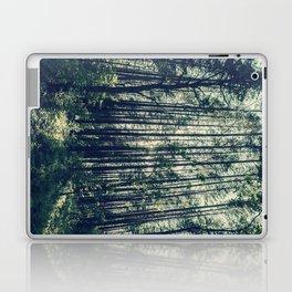 Behind the Trees Laptop & iPad Skin