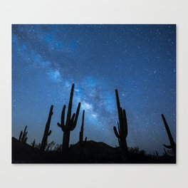 Milky Way, Dreams and Succulents Canvas Print