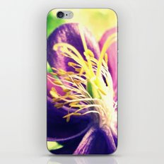 Seeds of the Earth iPhone & iPod Skin