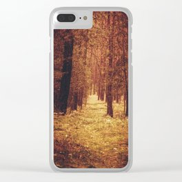 Forest Path Clear iPhone Case