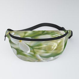 Spring 041 Fanny Pack