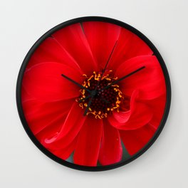 Red Red Dahlia Wall Clock