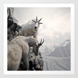 Hi, we are the mountain goats Art Print