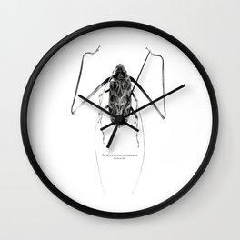 Acrocinus I Wall Clock