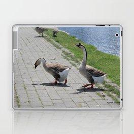 Bigs birds 2 Laptop & iPad Skin