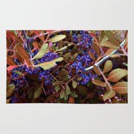 Alien landscape autumn berry surreal plants Rug