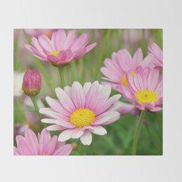 Daisy pink 090 Throw Blanket