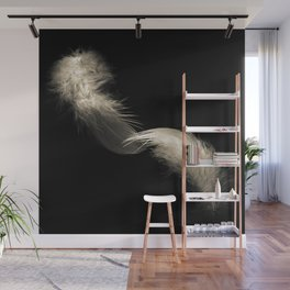 Two feathers in black and white Wall Mural