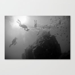 Assault On The Pinnacle Canvas Print