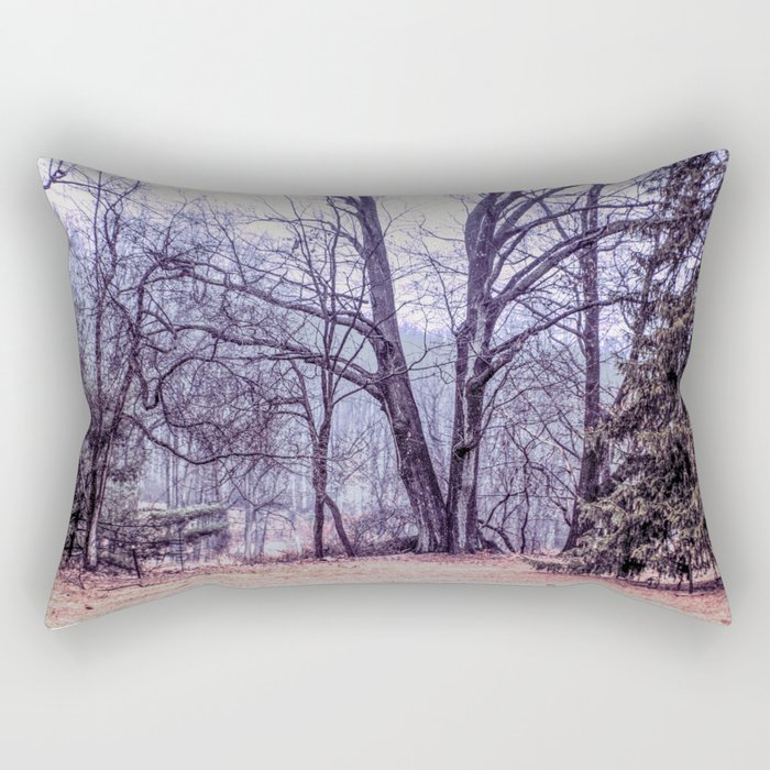 Landscape at Old Kennett Meetinghouse Rectangular Pillow