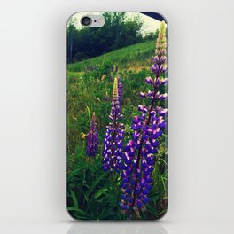 Quaker Bonnets iPhone Skin