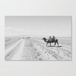 Mongolia  Canvas Print