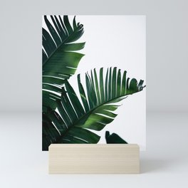 Palm Leaves 16 Mini Art Print