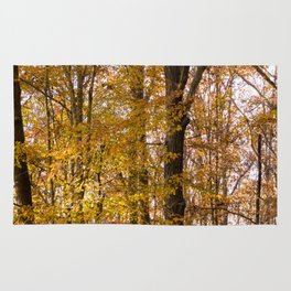 North Georgia Fall Colors 2 Rug