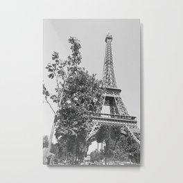 Among the Trees Metal Print