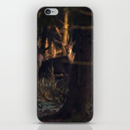 Red deer doe in dark forest lit by sunlight. iPhone Skin