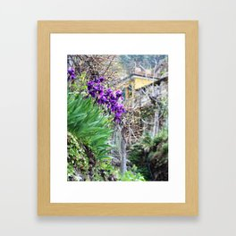 Purple Flowers, Chinque Terre, Italy Framed Art Print