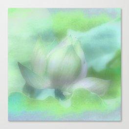 Soft Lotus Focus Canvas Print