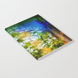Conservatory  in the earlier WTC Notebook
