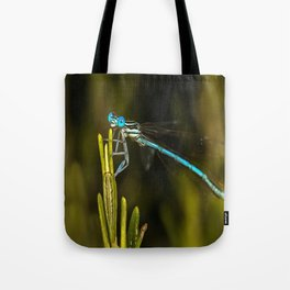 Common Blue Damselfly Tote Bag