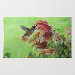 Hummingbird in Justicia Rug